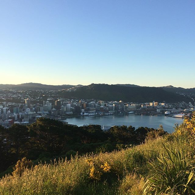 Ahh, Wellington. What a great place to live! If you squint you can almost see Smiths 😂😂😂