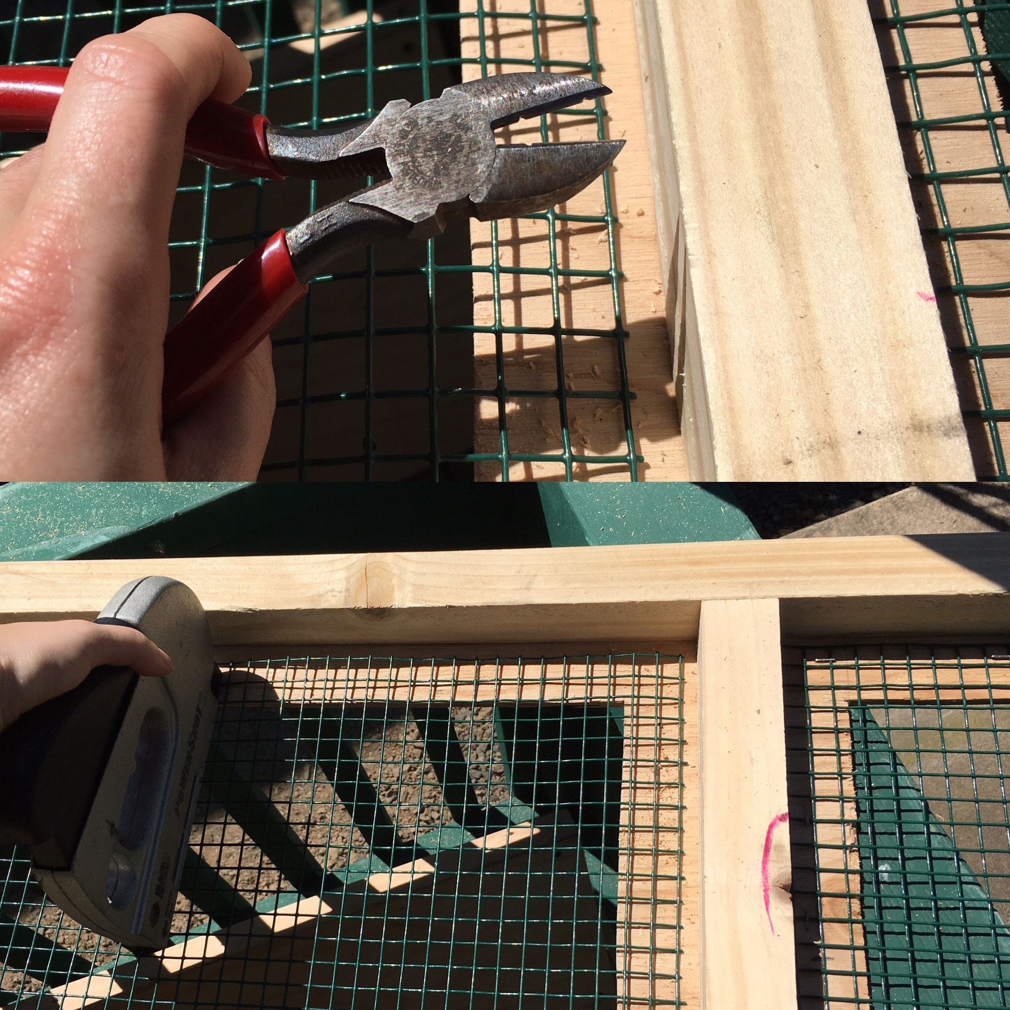 Clip and staple the wire mesh to cover the windows
