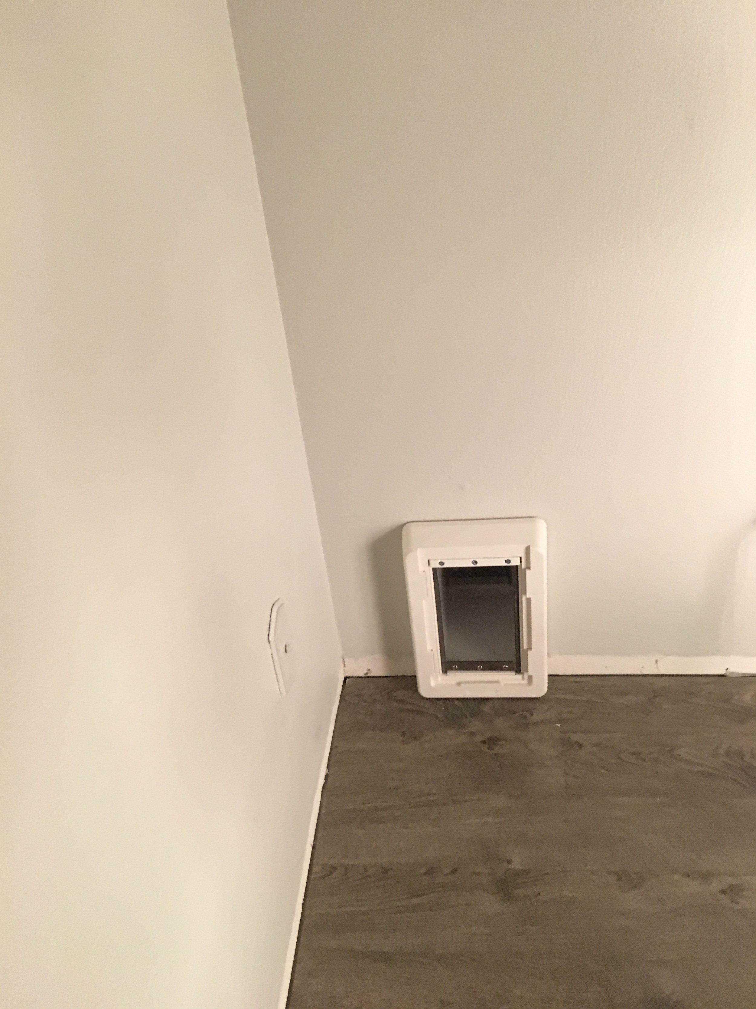 Interior cat door, in livingroom corner