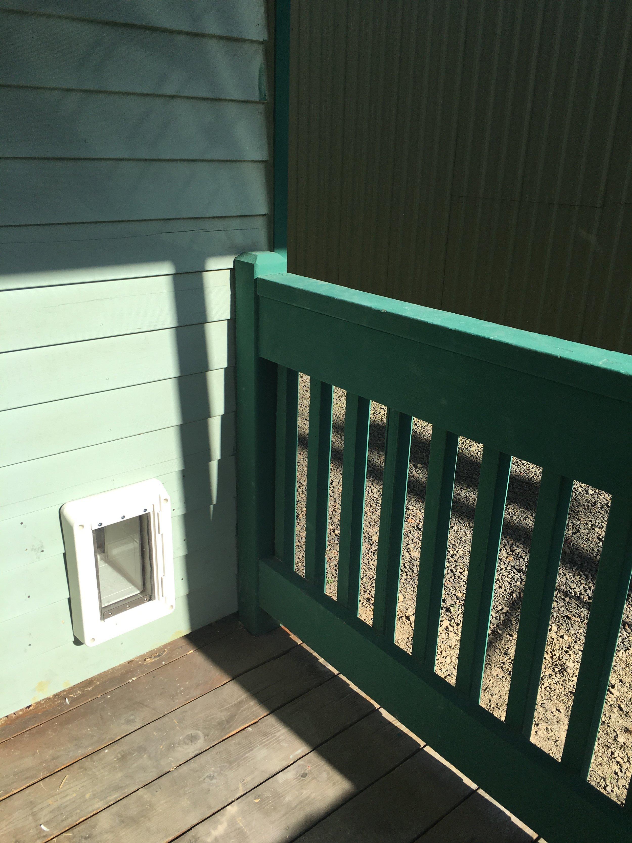 Cat door installed (front porch view)
