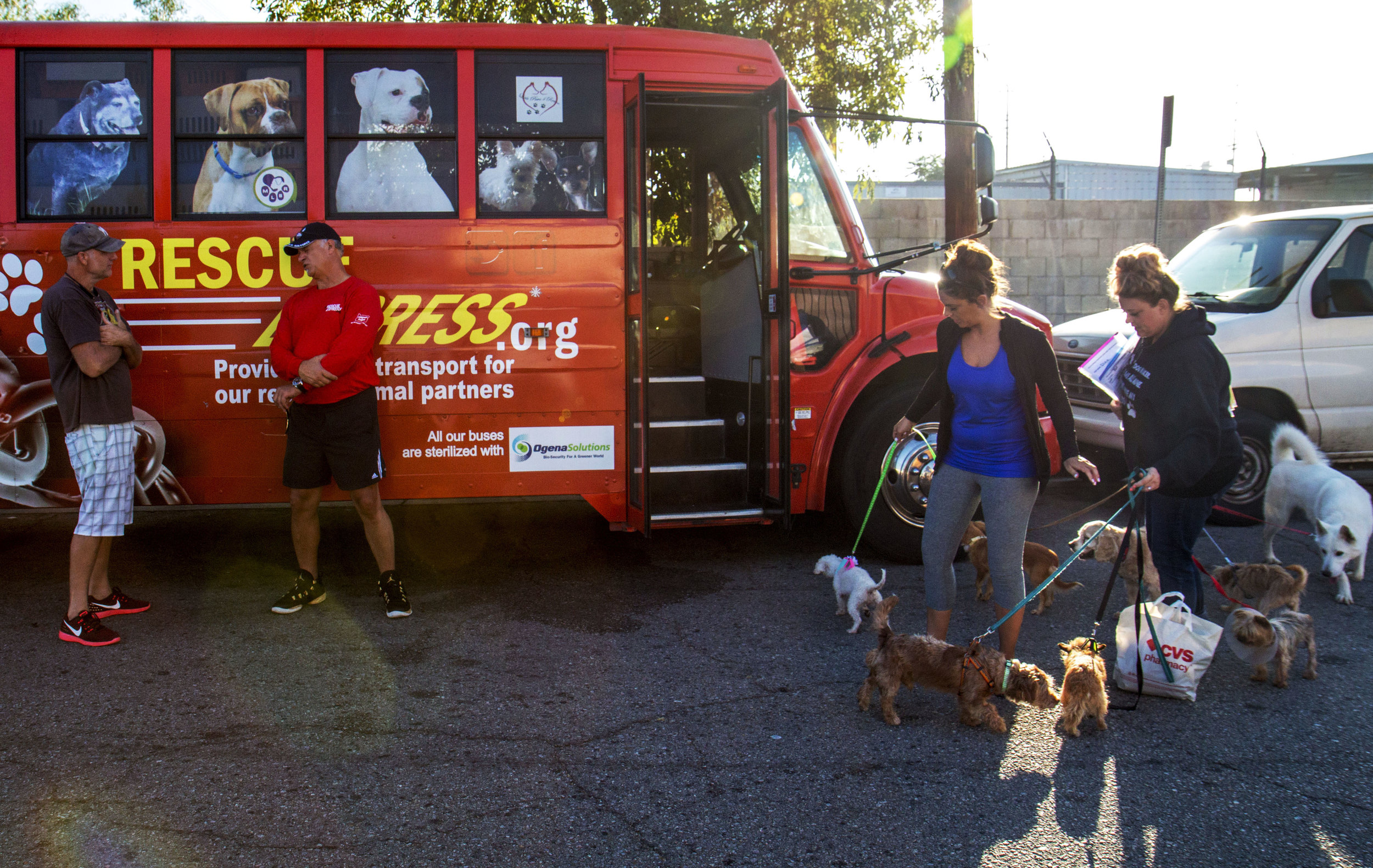 People wait outside the Rescue Express bus to load their animals at the first stop at Almost Home Boarding Place in San Fernando, Ca. The staff of the bus filled 24 carriers at the first stop.