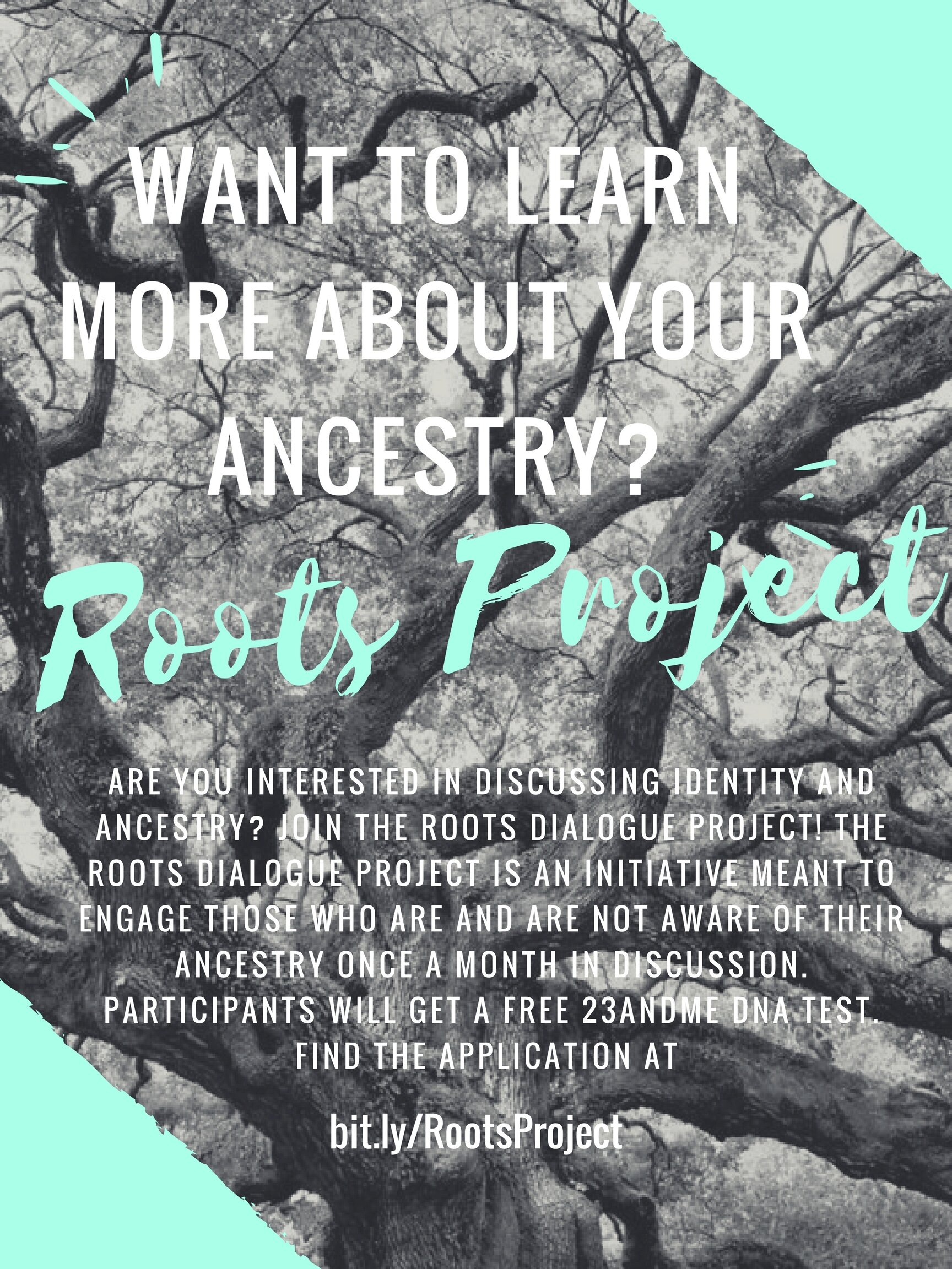 RootsProject.jpg