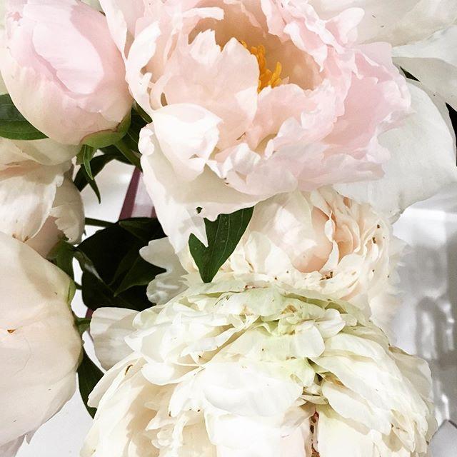 Perfect Peonies . . . #designinspiration #designinspo #naturedesign #peonies #floral #2pmcreativelab