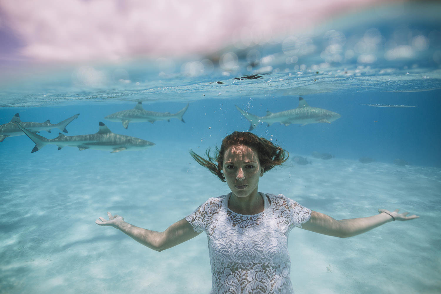 Brie swimming with sharks in the laggon at moorea