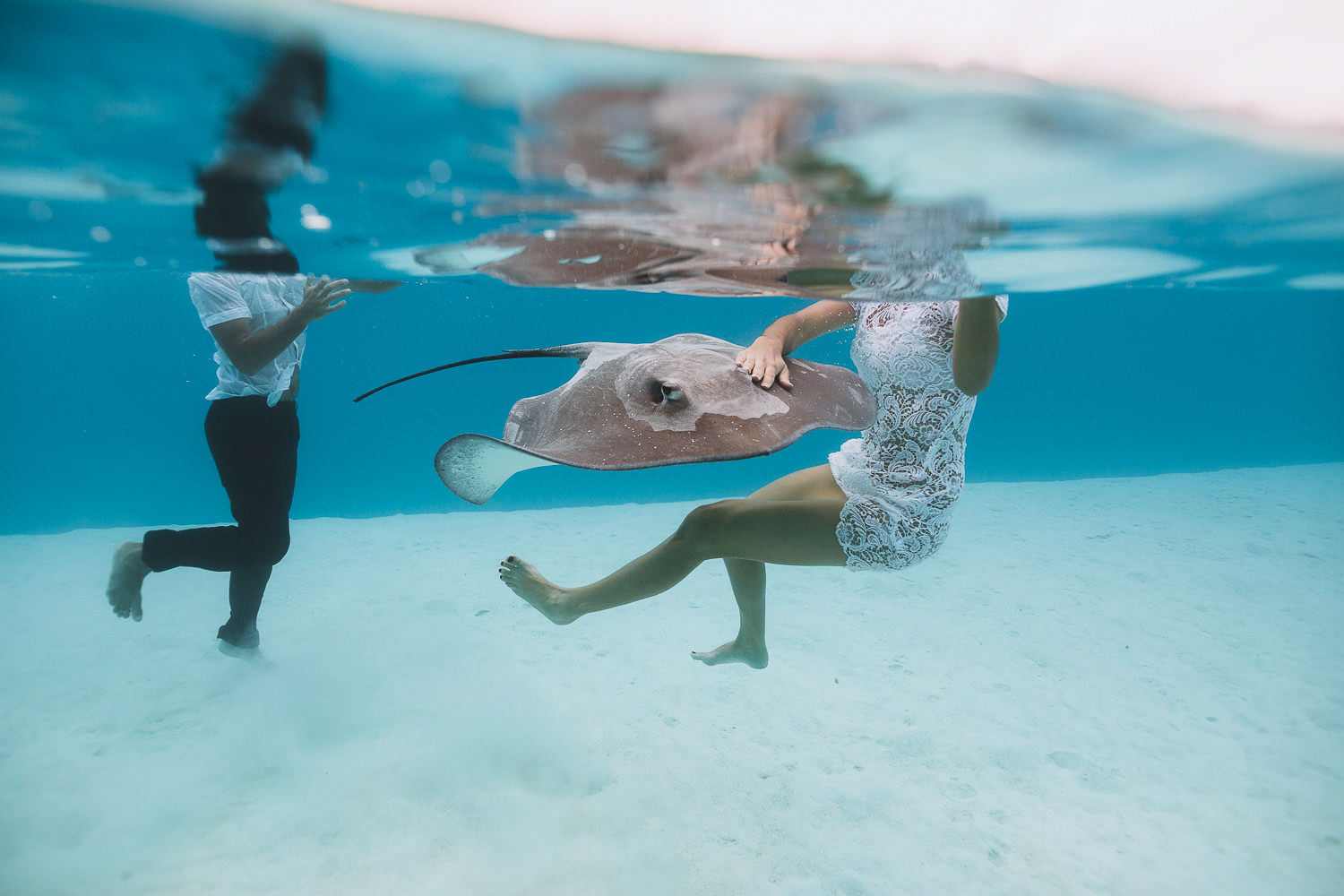 Bride and groom swimming with a stingray
