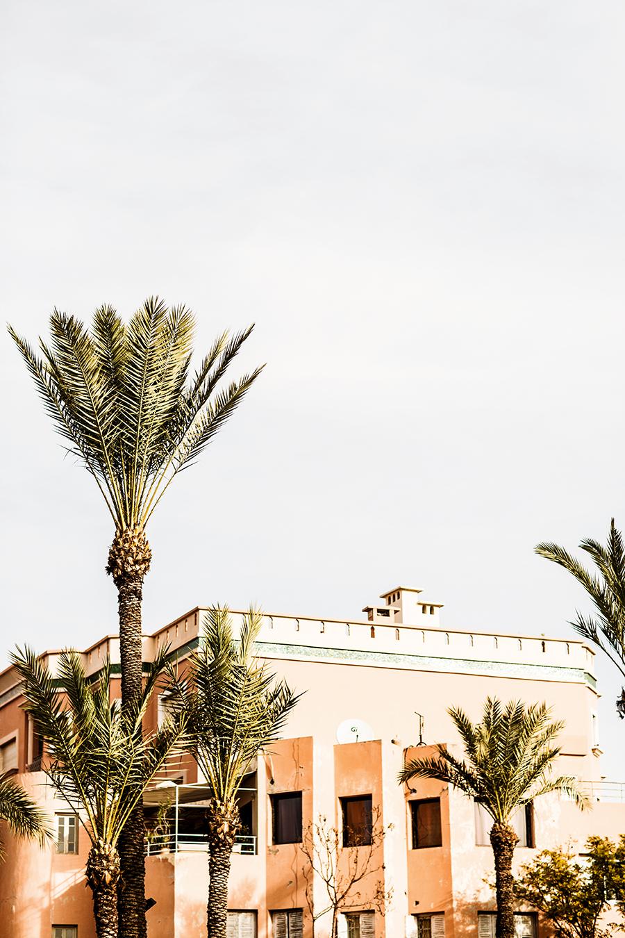 rosenlund_Marrakech045.jpg
