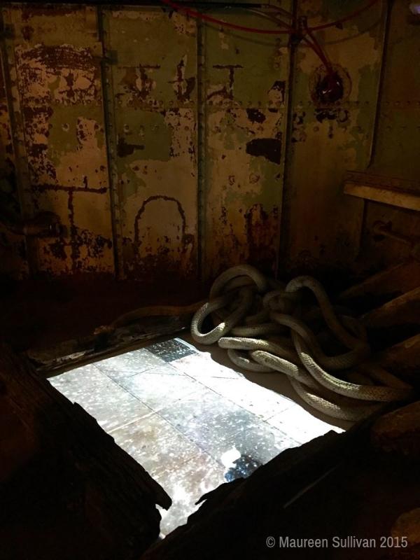 Melinda Wang Lilac 2.jpg