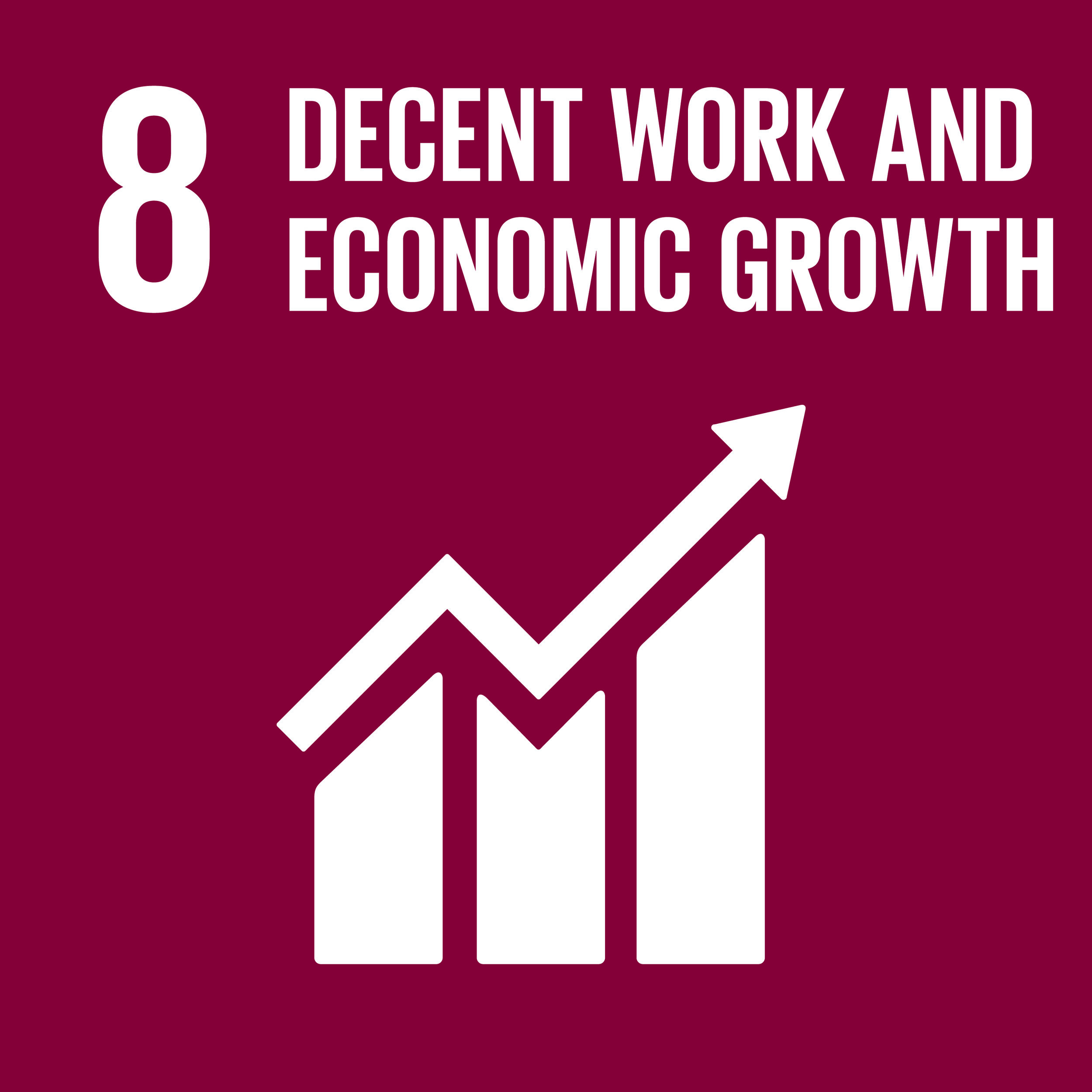 Sustainable Development Goals 8