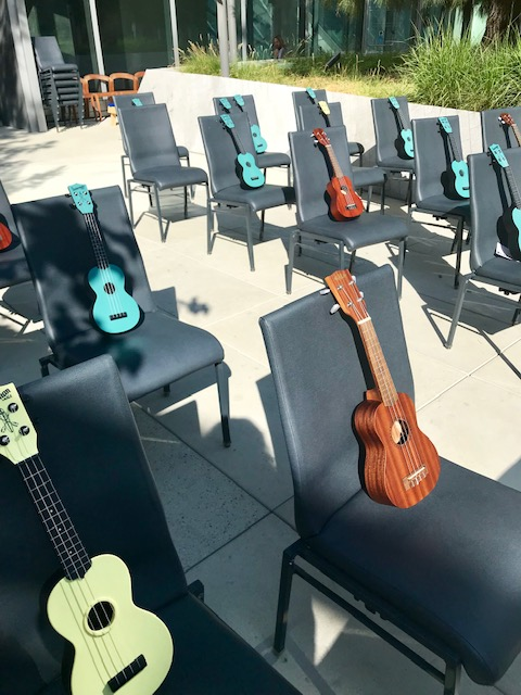 All the ukuleles lined up at Upswell 2018