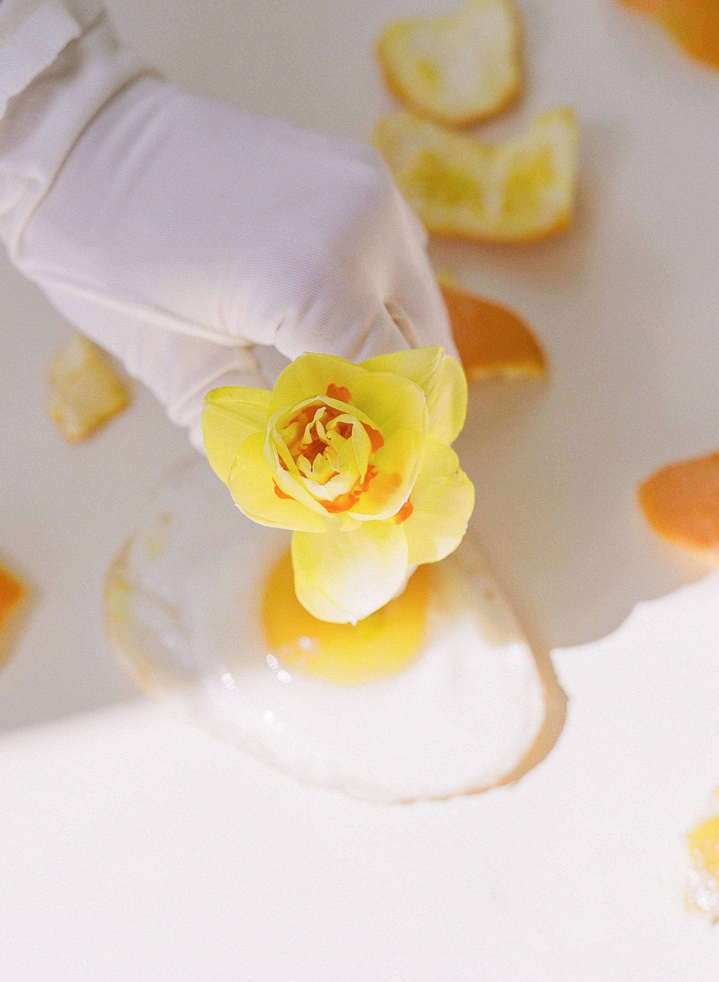 042_FriedEggs&Flowers.jpg