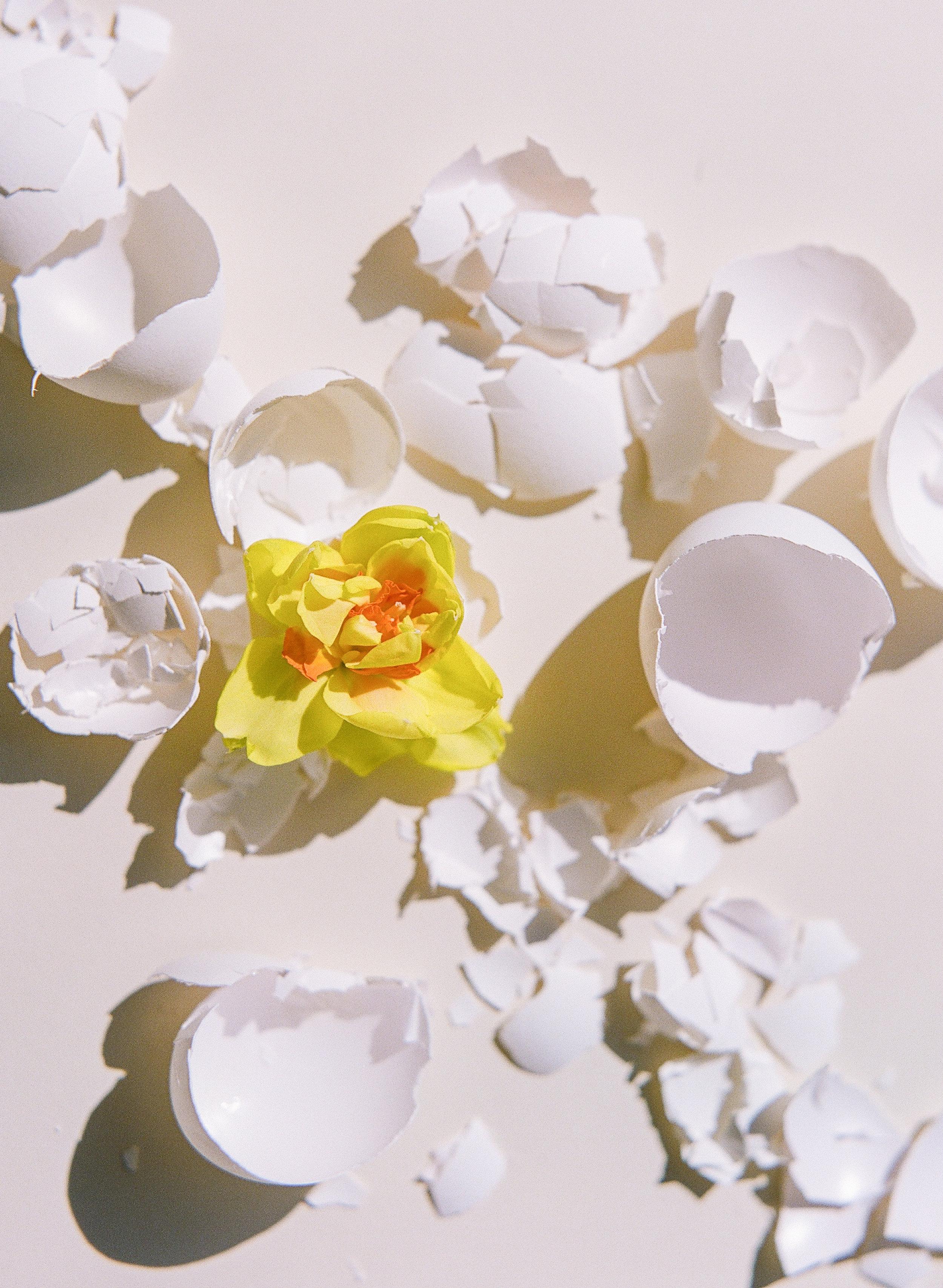 070_FriedEggs&Flowers.jpg