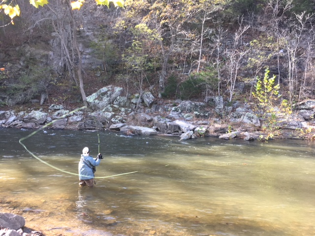 """Beth Boles has a new skill! During a frigid November weekend, she and her husband went fishing on the Potomac River in West Virginia.She had a wonderful time! """"Did not catch a trout, but did reel in a rather large leaf!"""""""