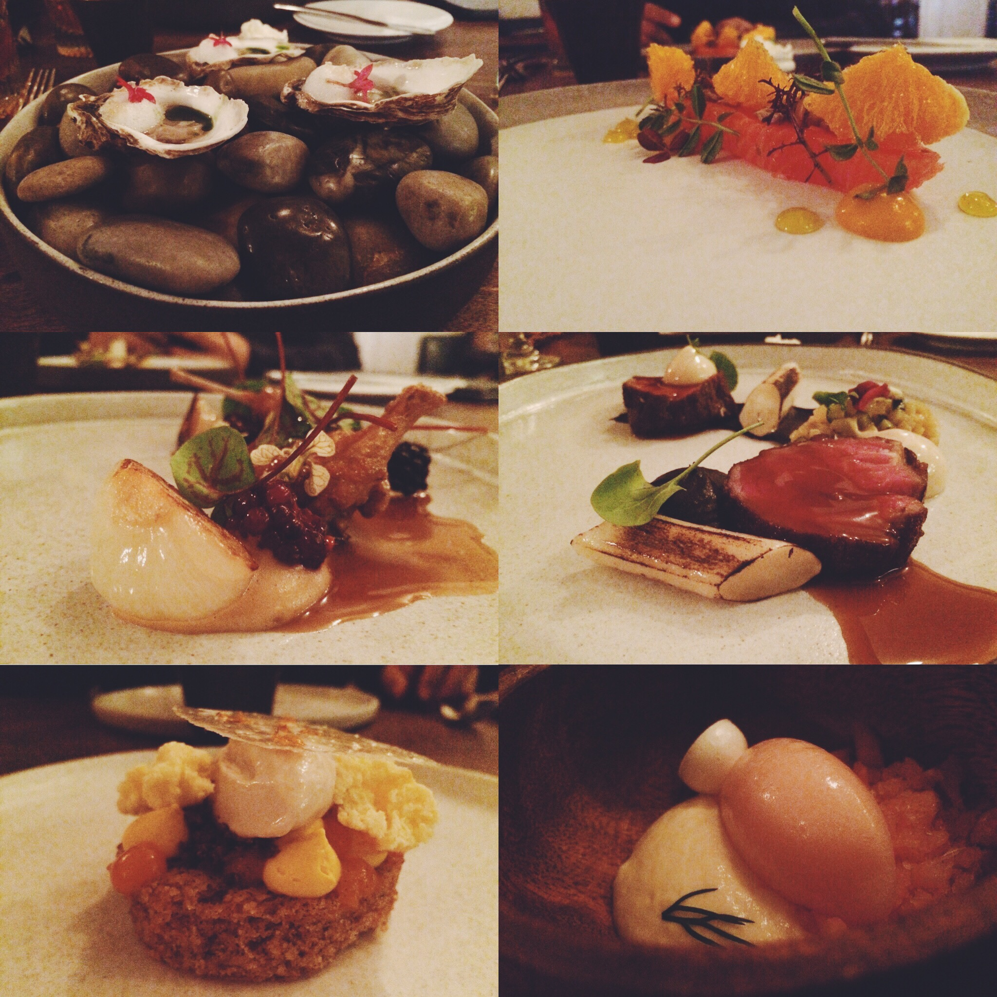 From left to right: Wild goose oysters with smoked vinaigrette, grapefruit and finger lime/ Ora King salmon, oil, seed, and herbs/Quail, blackberries, bread sauce and roasted onions/Cantebury angus, eggplant and Sauce Americaine/Grapefruit and dill/Carrot cake, curd and chai.