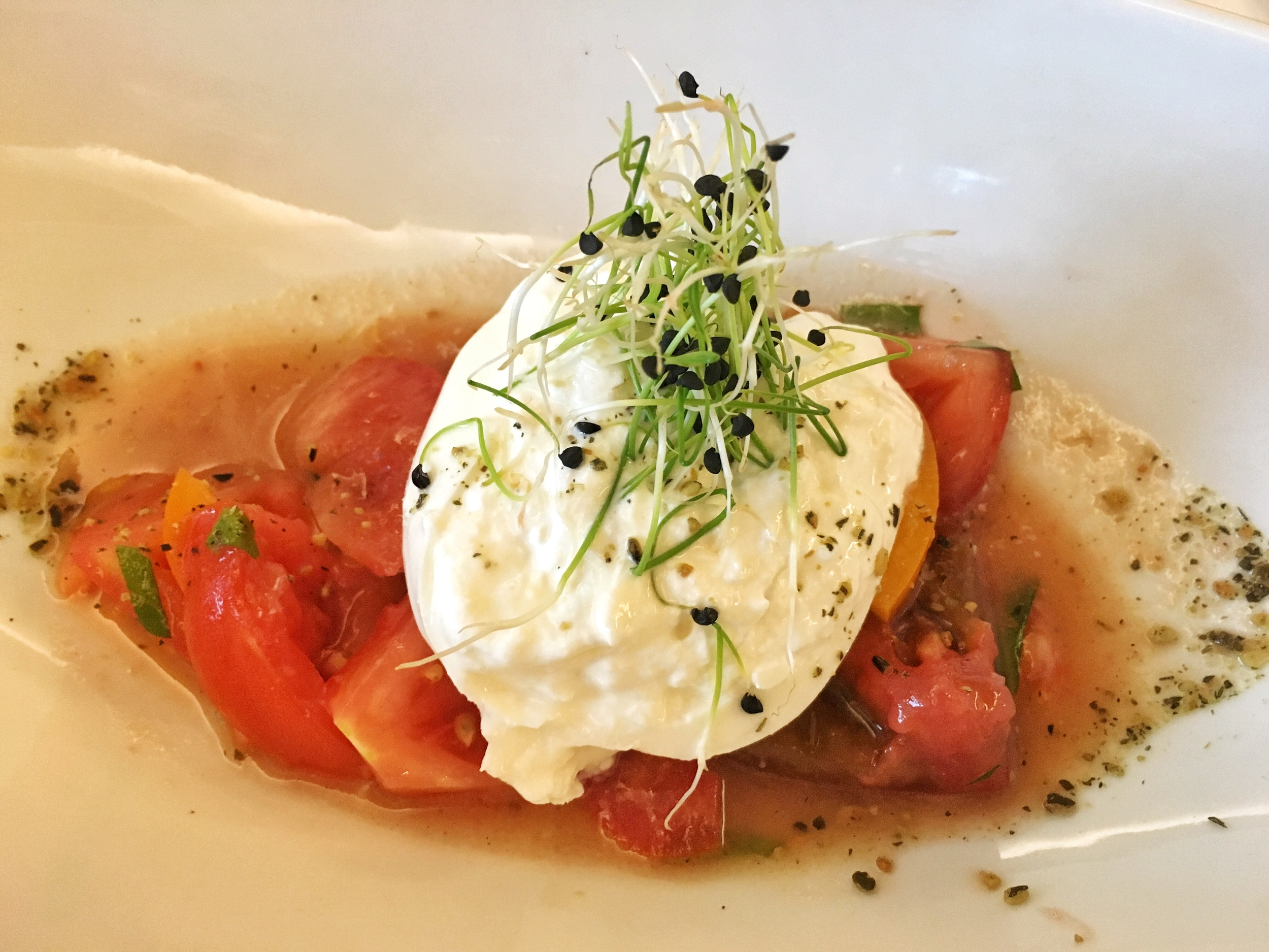 Special appetizer of the day- burrata, salsa verde, heirloom tomatoes, cilantro.