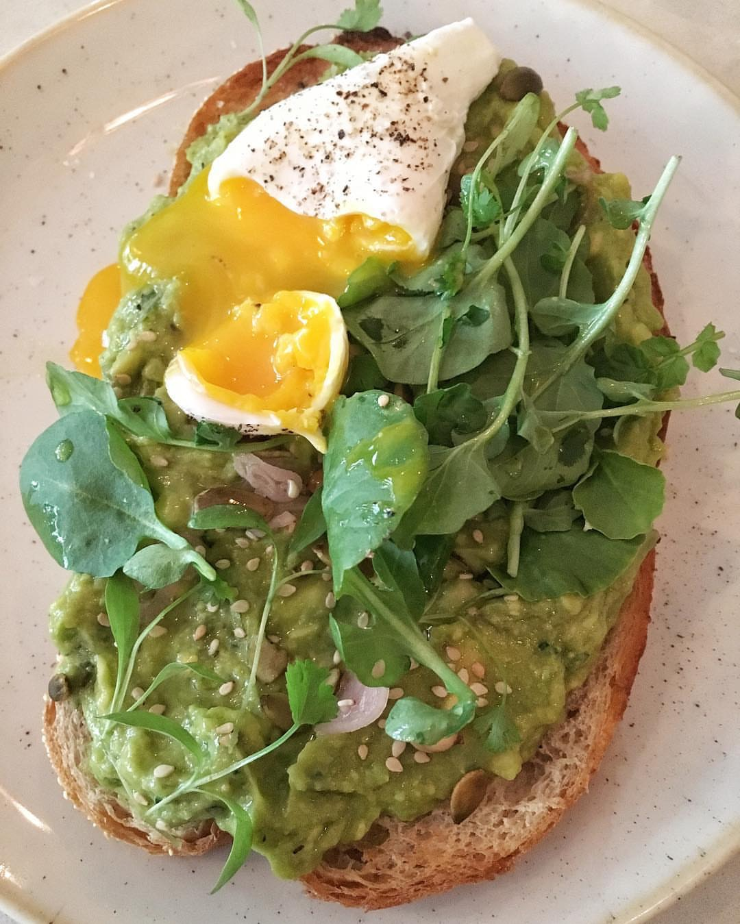 Smashed avocado on sourdough with charred scallions, jalapeño, cilantro, pepitas, lime and a poached egg on top