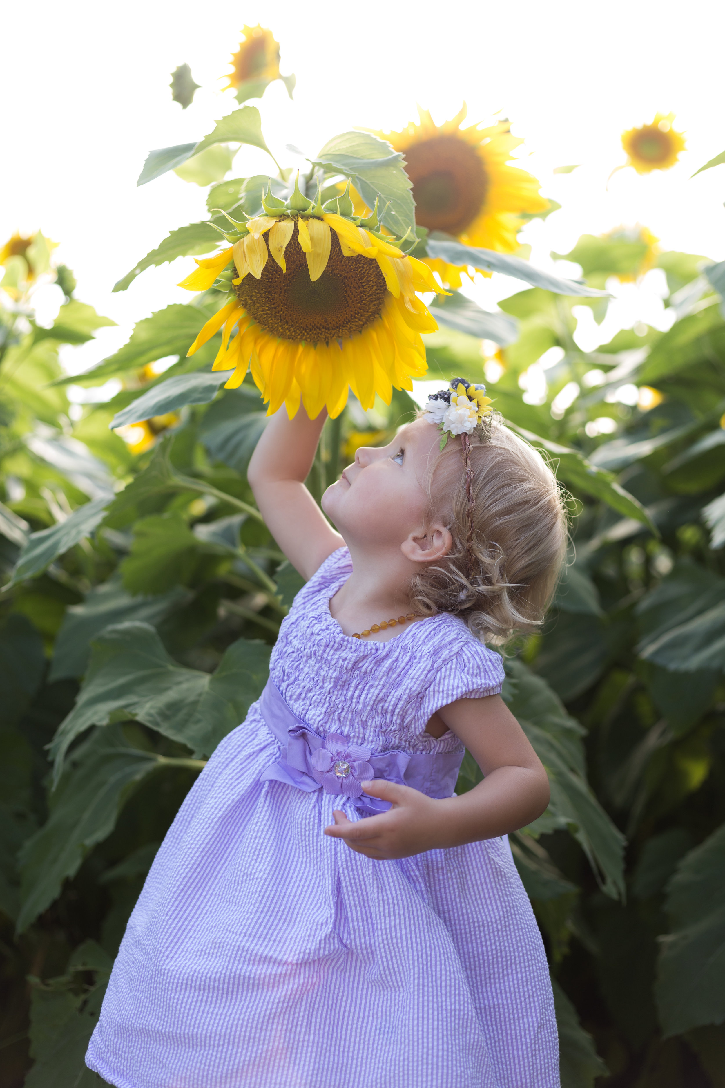 All the kids loved smelling and discovering the beautiful Sunflowers!