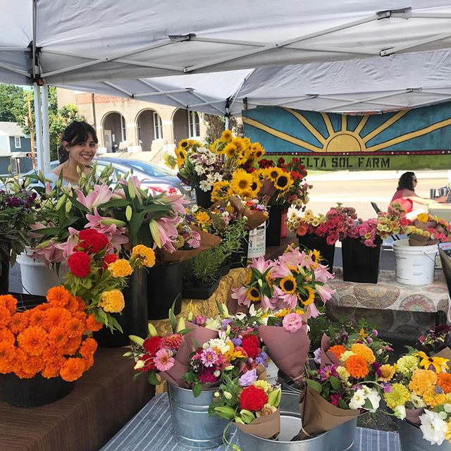 Celebrate the upcoming holidays by supporting your local farmers! Come see us at the market! 8-1. Cooper Young. #deltasolfarm #butchflowers