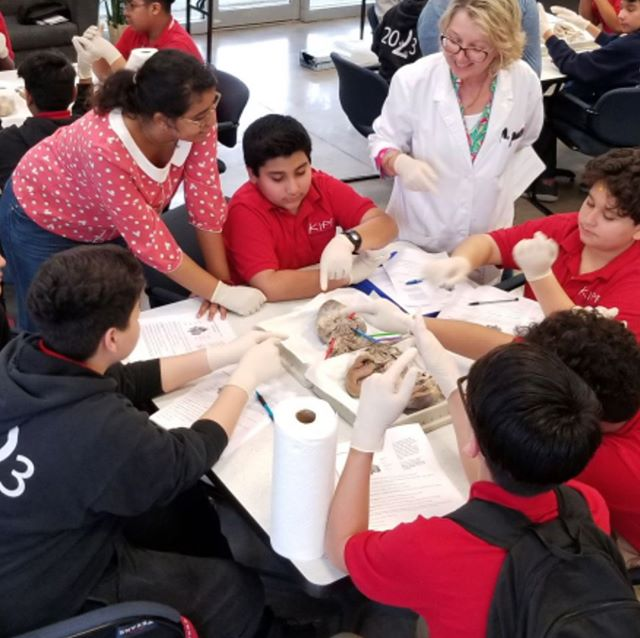 During our Body & Brain Unit, our 7th graders had the amazing opportunity to visit HBU to study with Biology students and staff and get hands on (and brain-on) experience learning about the body. #kmsunits #fieldlessons #learningisfun #beyondtestprep