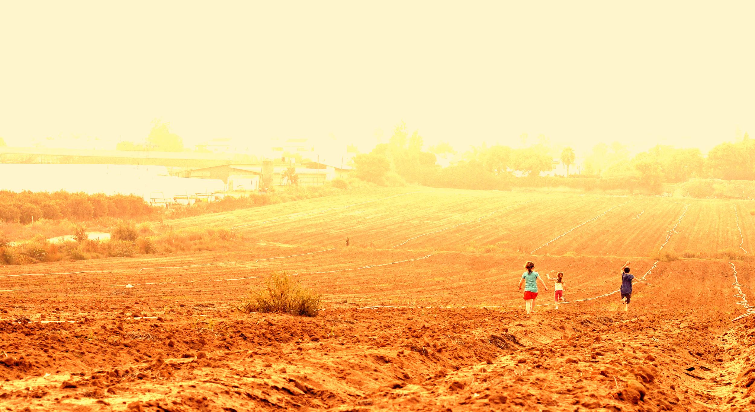 LaurenSachs.Running.jpg