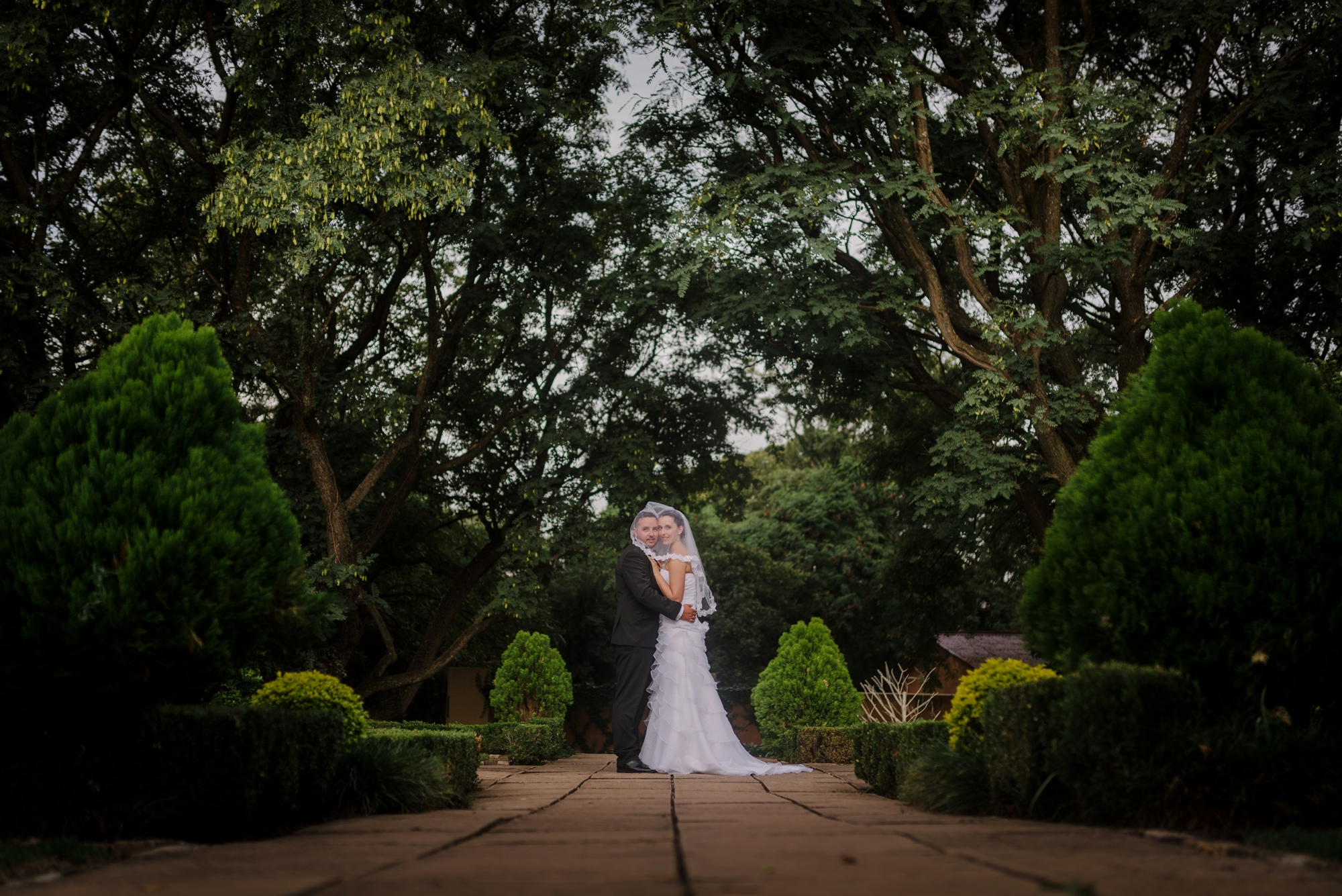 wedding photography, The Moon and Sixpense, wedding photos, beautiful bride, exquisite wedding