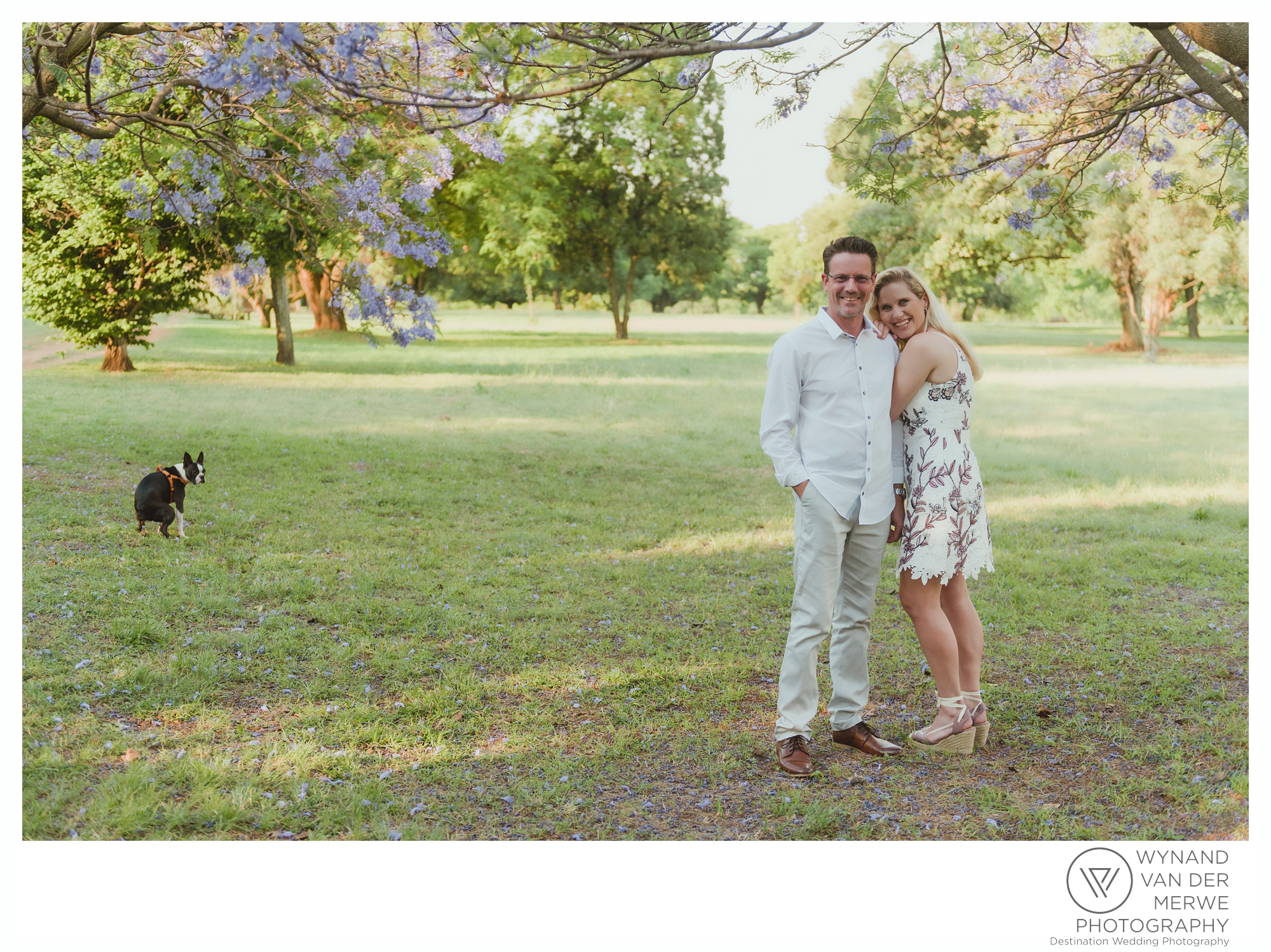 A dog making a poo while doing an engagement shoot