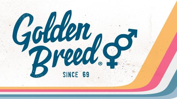 Golden_breed_logo_657x369_grande.jpg