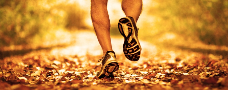 runningshoes-banner.jpg
