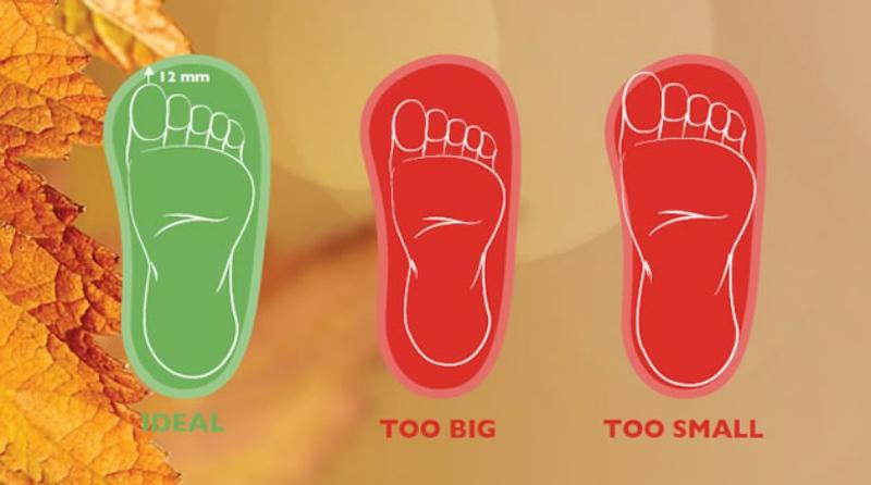 shoesthatfit.jpg