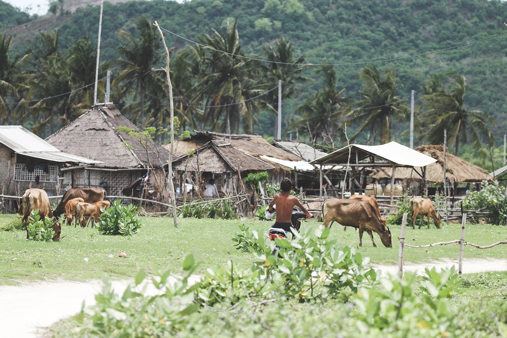 Kuta Lombok - Earthquake