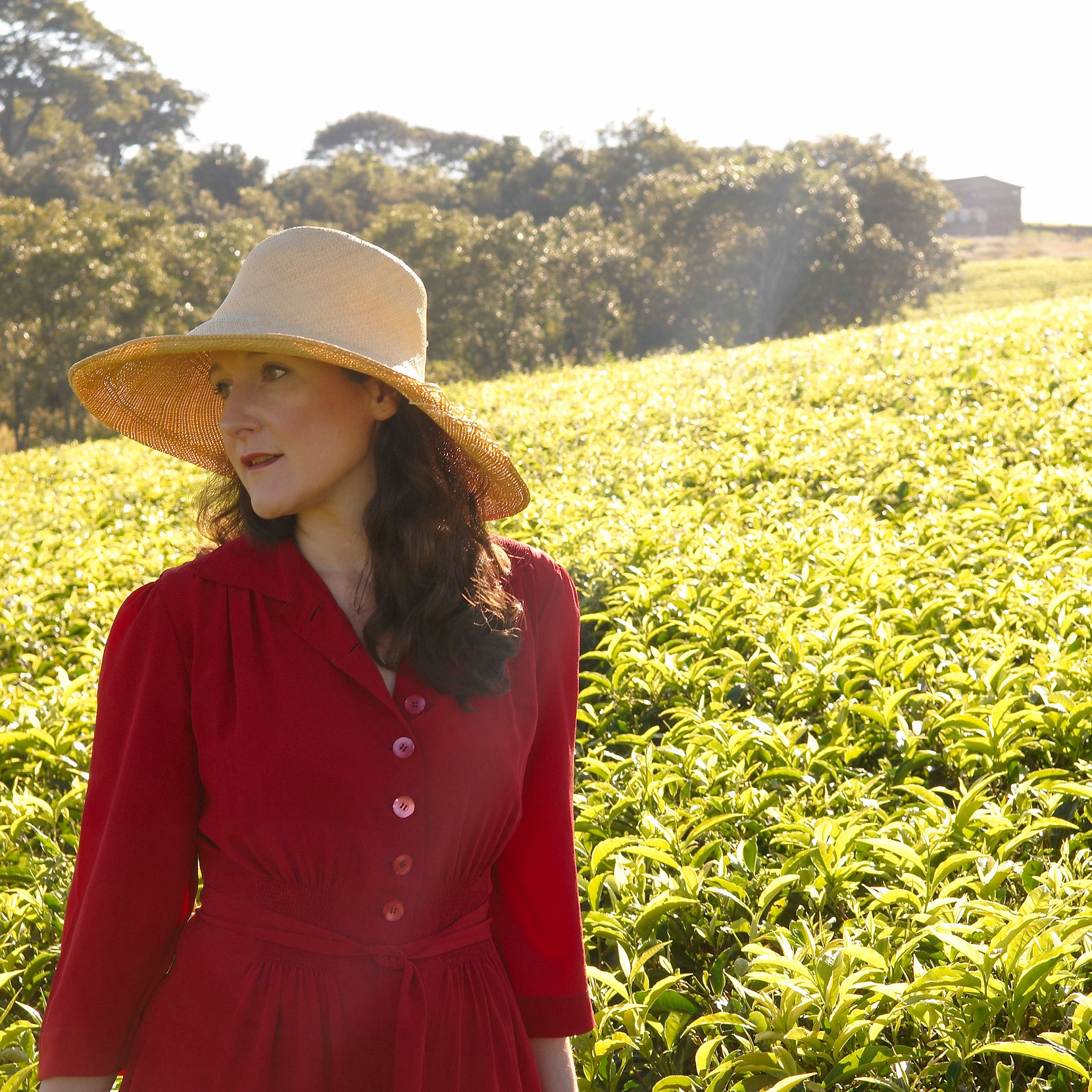 Henrietta Lovell, widely known as the Rare Tea Lady, is the founder and CEO of the award-winning, global brand Rare Tea Company. -