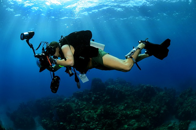 underwater-photographer-618978_640.jpg