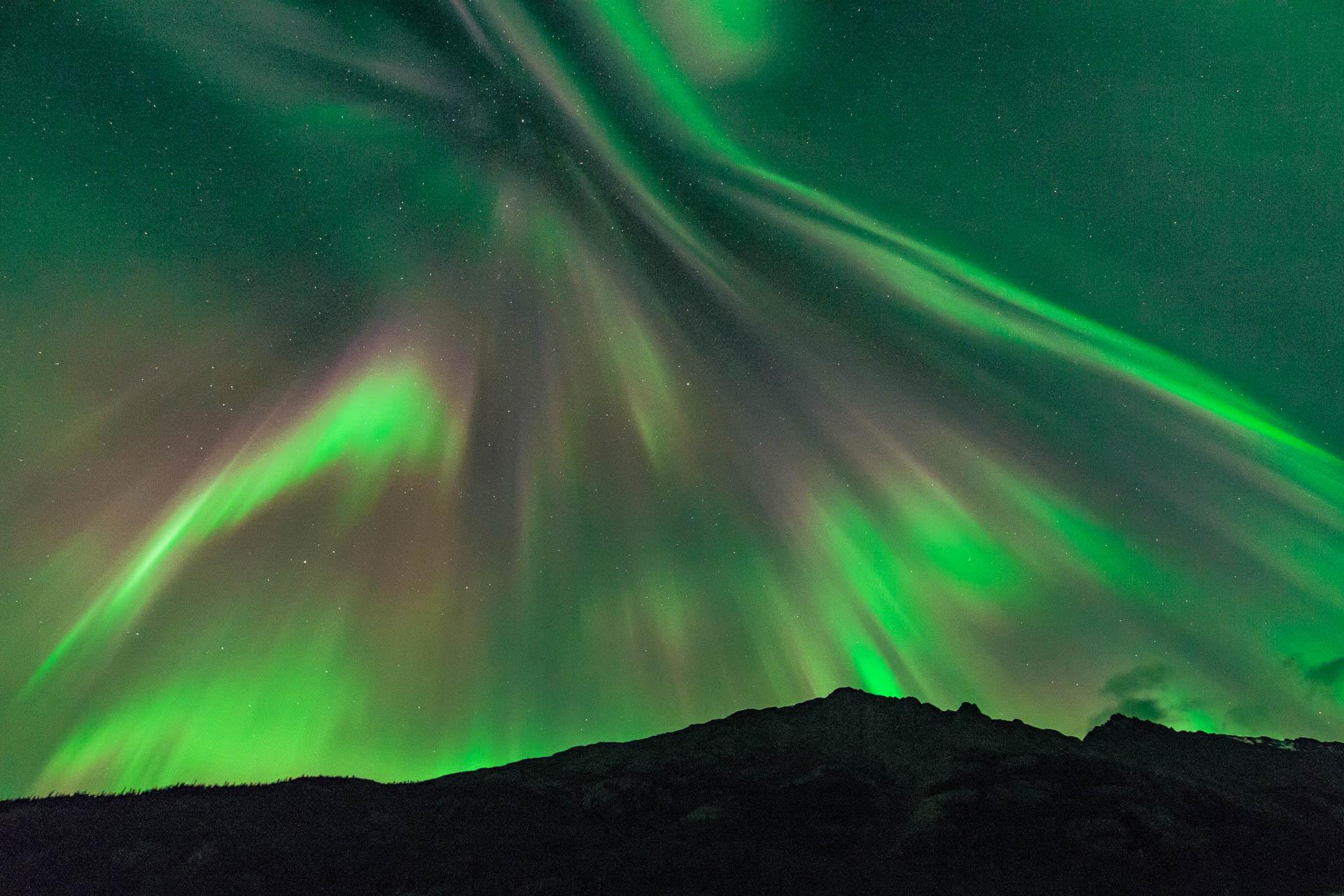 Aurora_diario_11_WEB.jpg