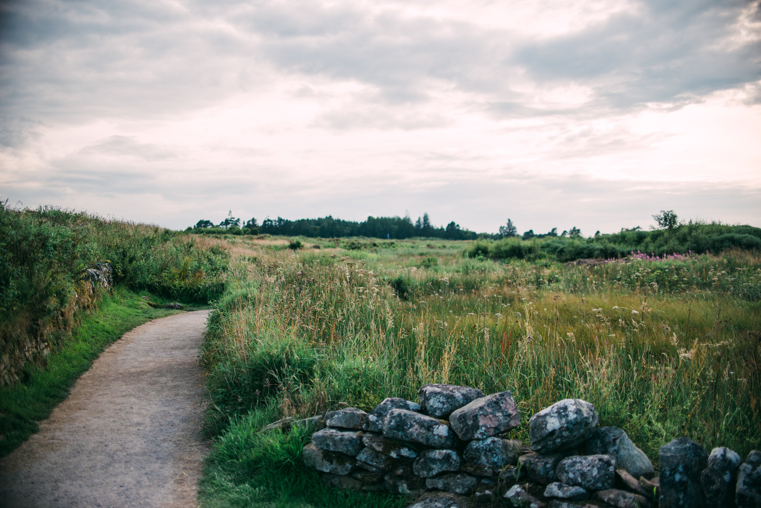 Scotland-1435.JPG