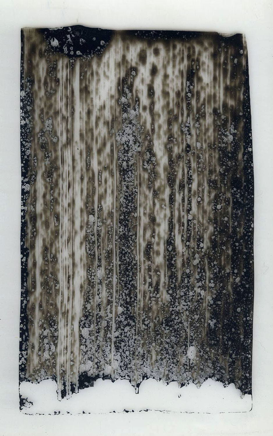 VEIL (I)  2014  Japanese ink on archival Polymex with conservation board  61.5 x 42.4 cm   (private collection UK)