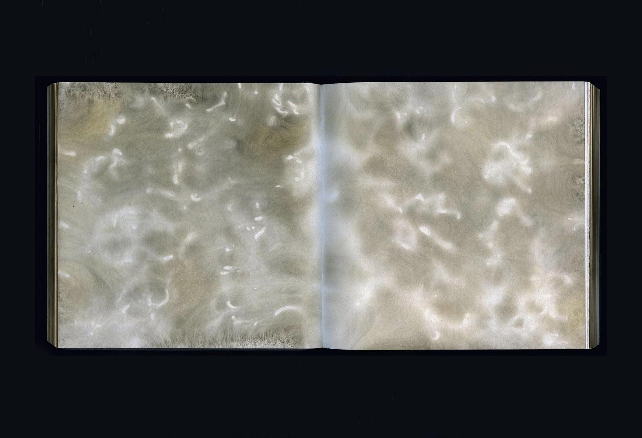 CARBON 2007–17  carbon deposit on bound paper,pp. 43, 44  20.0 x 40.0 cm