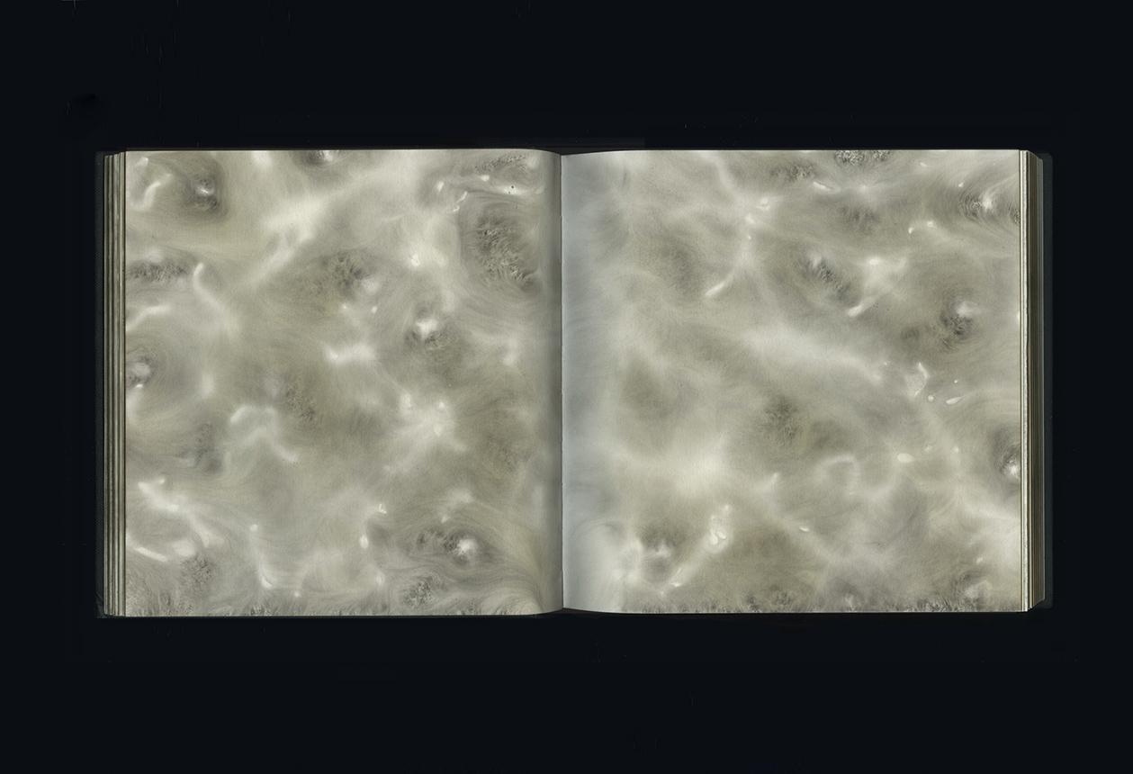 CARBON 2007–17  carbon deposit on bound paper,pp. 41-42  20.0 x 40.0 cm