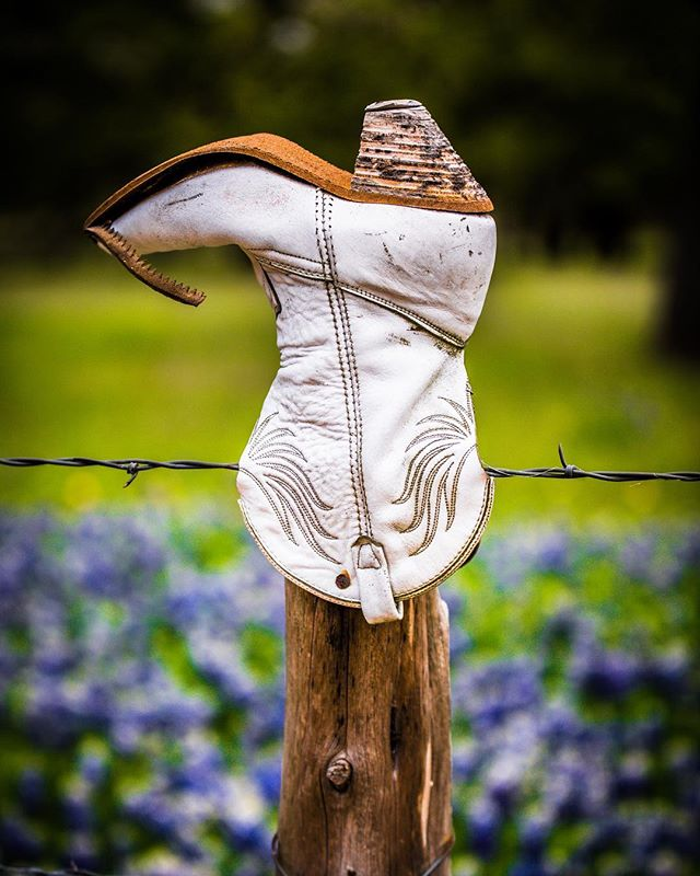 Willow City Loop near Fredericksburg, Texas is famous for its bluebonnets. This year we have had an amazing season. This ranch is my favorite because the boots in the fence post. Not sure if you can get more Texan than this. . . #Texas #dontmesswithtexas #bluebonnets #amazingearthofficial #PrecisionCameraATX #earth_deluxe #destinationearth #TexasToDo #naturephotography #gottolove_this #fodorsonthego #landscapephotography #getoutside #visittexas #igaustin #texasmonthly #naturephotography #exploringglobe  #TXWildFlowerWatch #txig #wonderfulplaces #texasgram #trueaustin #earthfourseasons #txbkrds #goodtexasliving #travelpictures_world #livetexas #inspire_nature_now #