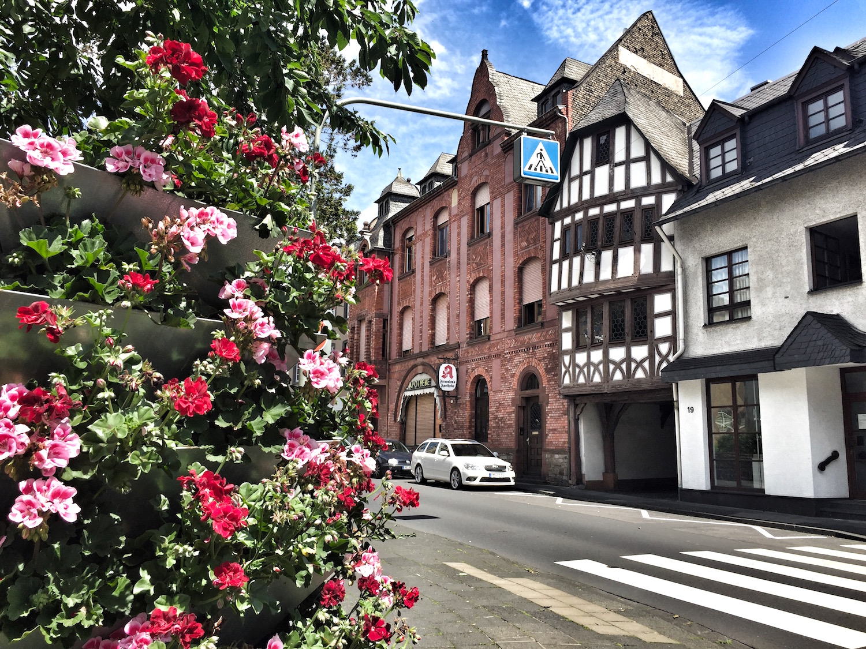 Rheinquartier_City1.jpg