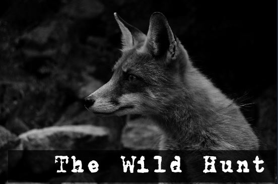 Follow the tumblr fox, https://wildhuntmag.tumblr.com/