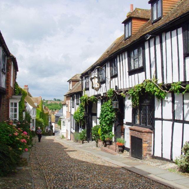 Rye Sussex