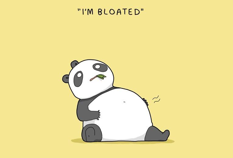 bloated panda
