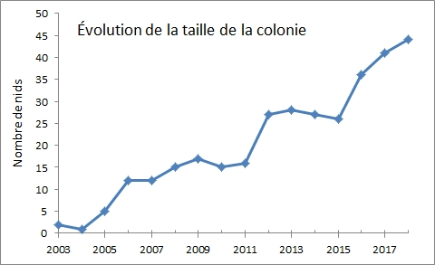 graphe_taille.jpg