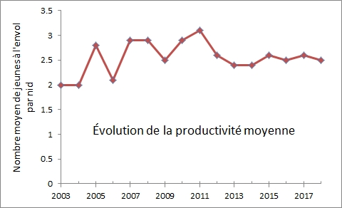 graphe_productivite_moyenne.jpg