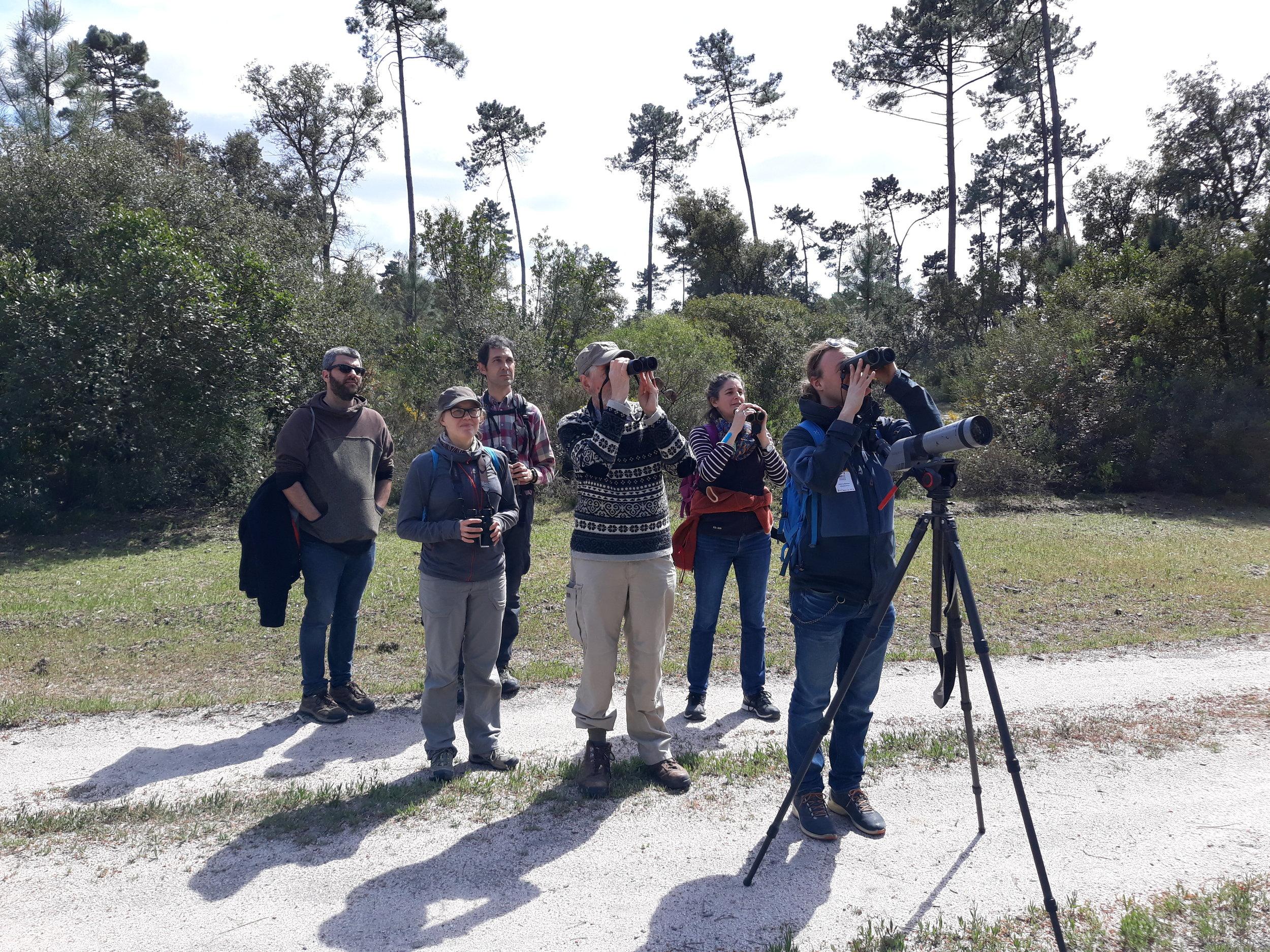 « L'ornithologie collaborative » est un concept énoncé en 2007 par le britannique Jérémy Greenwood dans  une synthèse passionnante à lire .