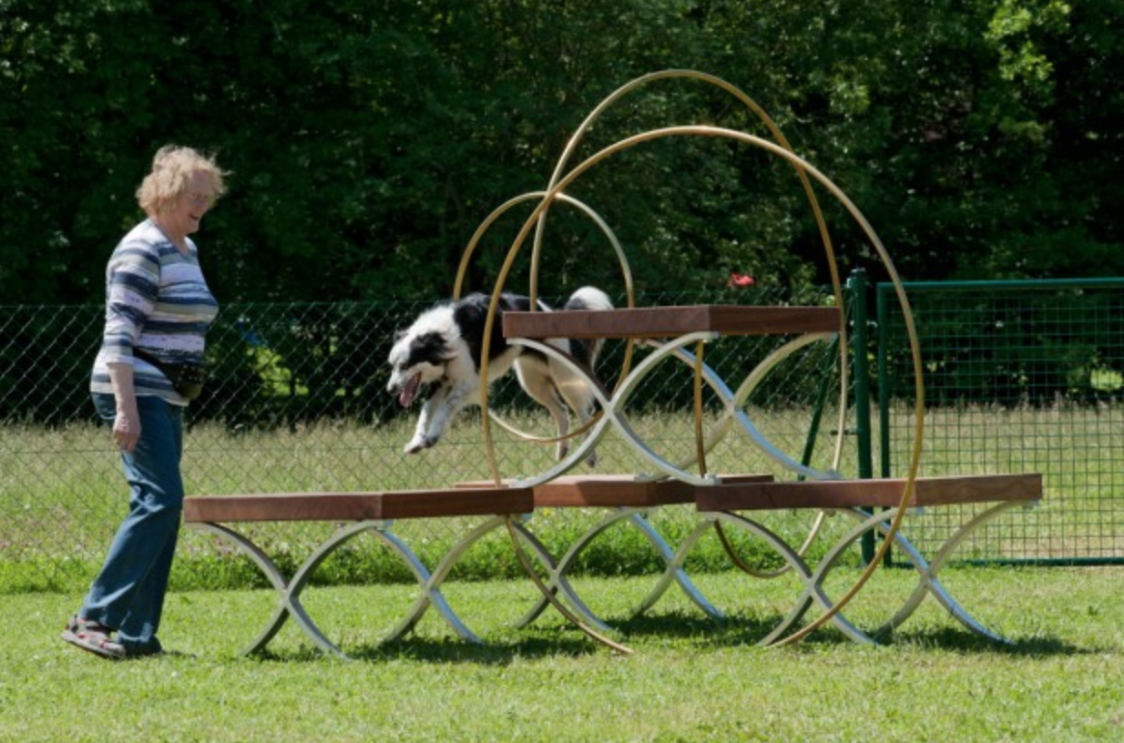 - Dog Run, dOCUMENTA (13), Kassel, Germany, 2012
