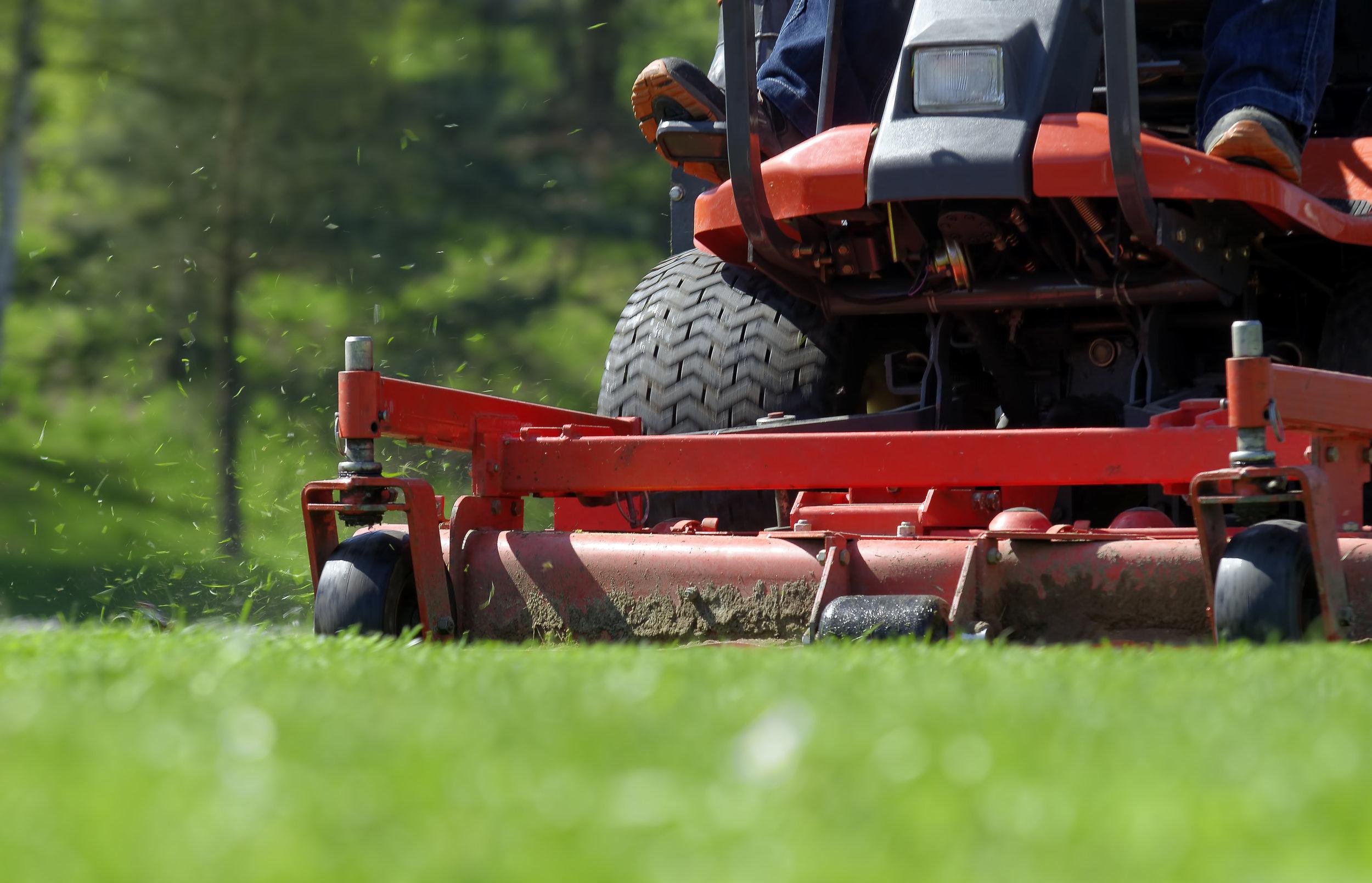Rasen- und Wiesenpflege
