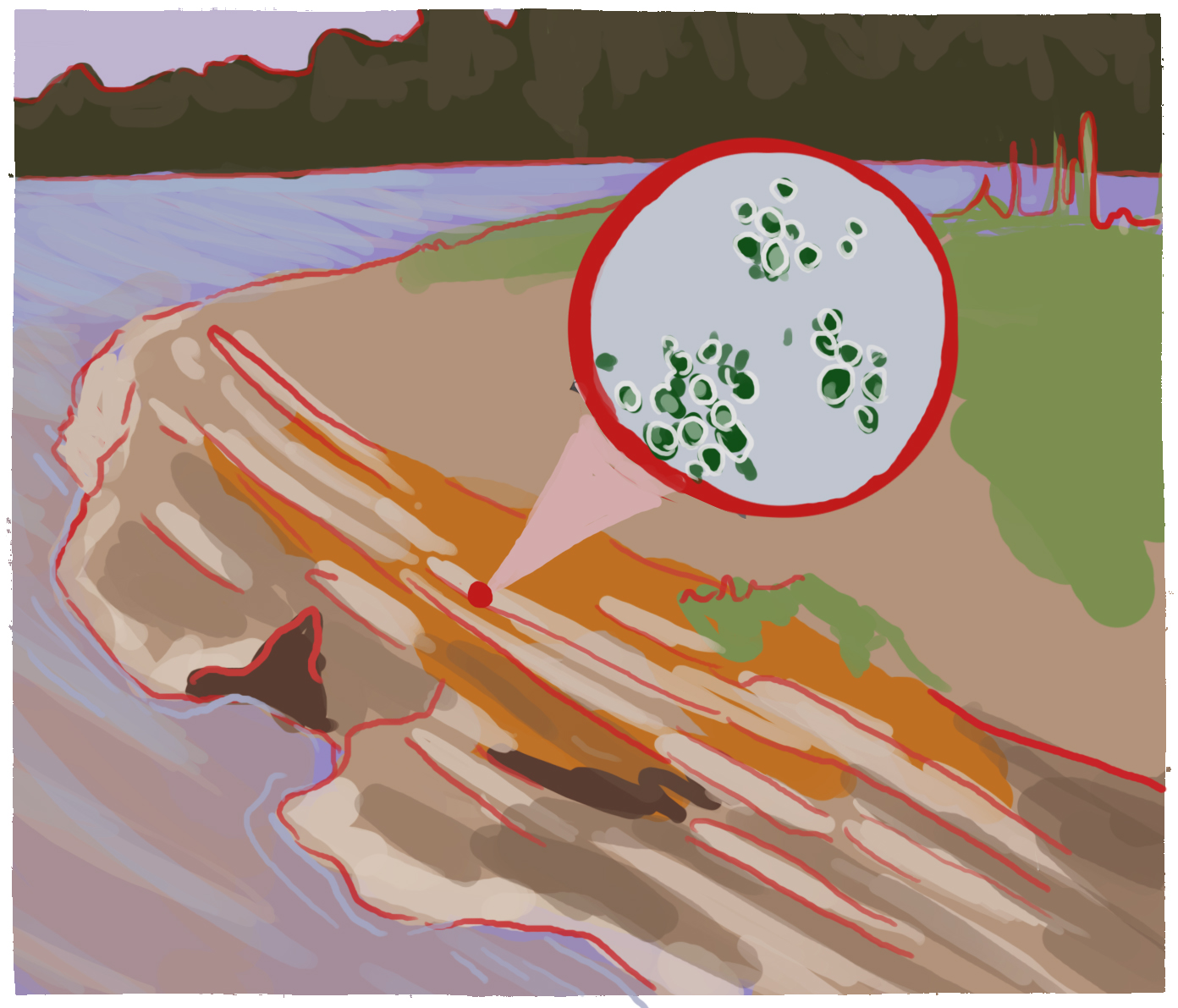 Concept 3: the location the article describes, with a close-up of the bacteria