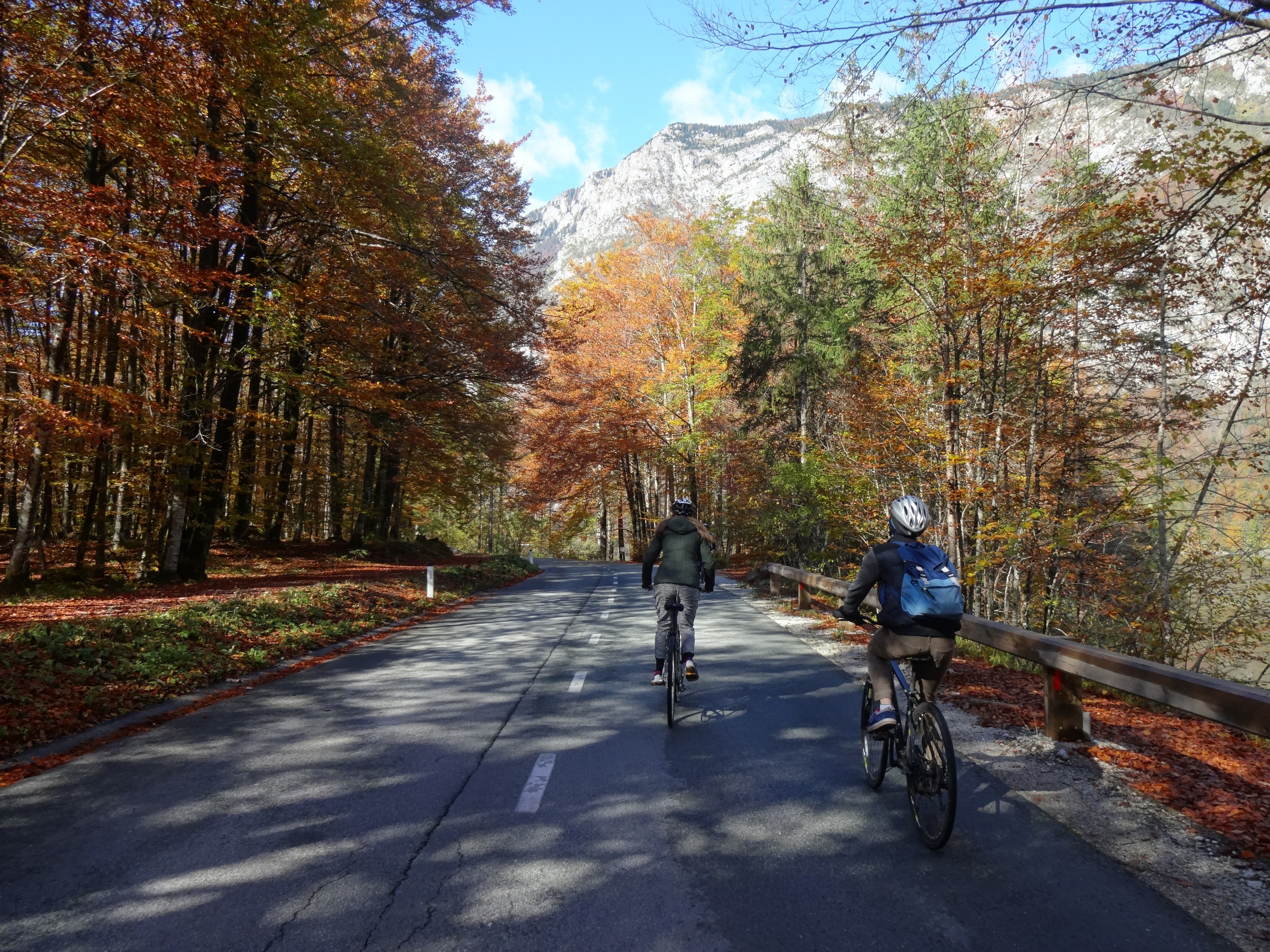 a day biking in slovenia with friends was afforded by cooking our meals with those same friends lake bled, slovenia -m.quigley