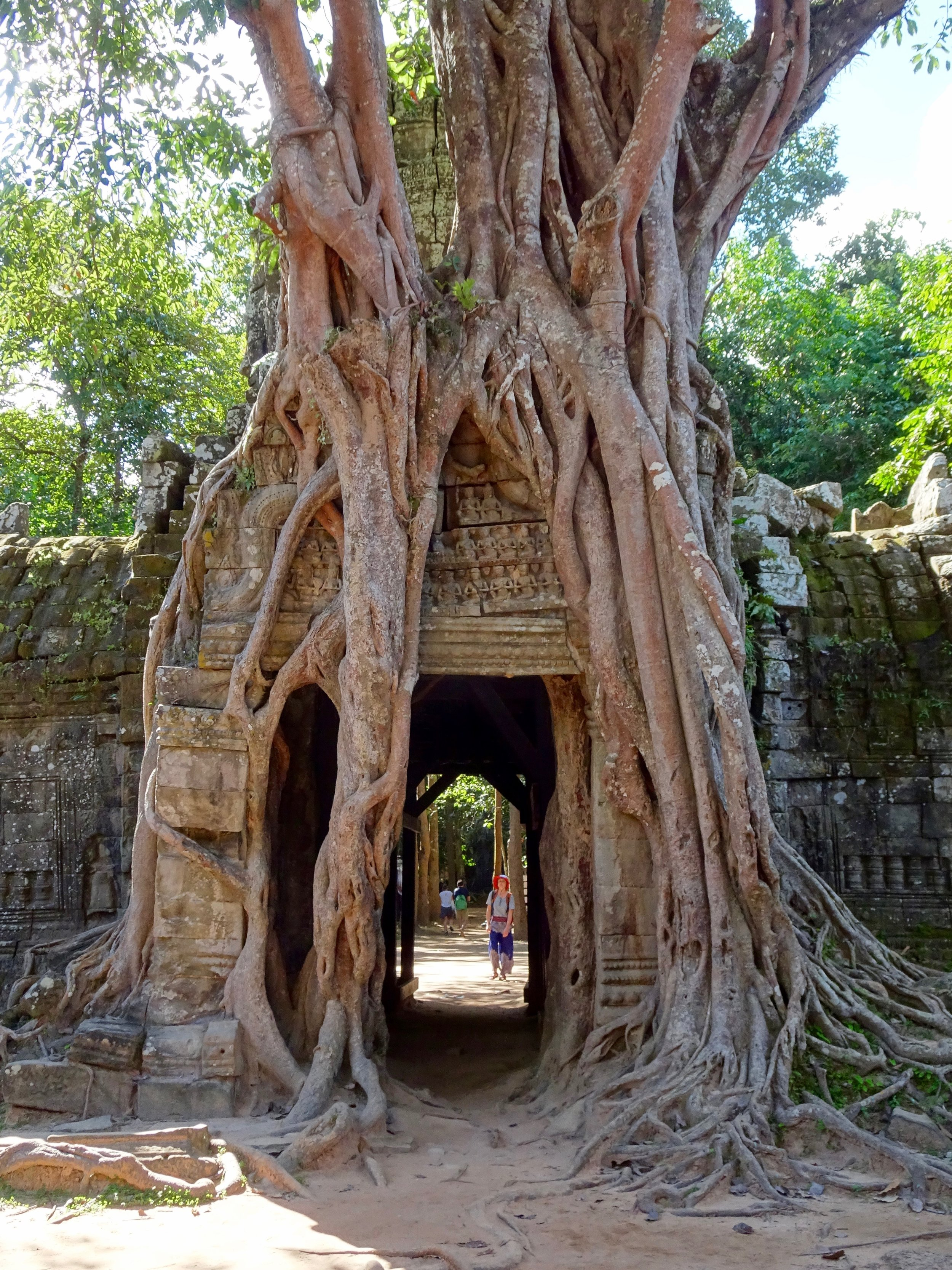 TA SOM,  ANGKOR WAT TEMPLE COMPLEX  , SIEM REAP, CAMBODIA - M.QUIGLEY