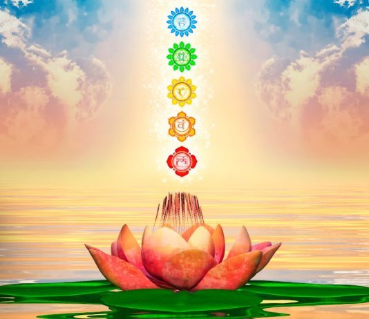 - THIS IS A SELF PACED VERSION OF OUR CHAKRA COURSE THAT YOU TAKE IN YOUR OWN TIME.In this course you will move through the Energy centres using the Healing modalities of Visualisation, Expressive Art therapy and Aromatherapy.Each week you will receive a visualisation MP3, video introduction of each chakra and a PDF.We cover the healing modalities that will assist you balancing your chakras such as Movement, Abdominal massage, etc .You will learn the properties of Essential Oils and how they affect your Emotional, Physical and Spiritual well being.You will also learn how to use the oils by various methods such as baths and elixirs.YOU WILL RECEIVE THIS COURSE VIA EMAIL WEEKLY